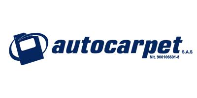 autocarpet-tapetes-para-carro