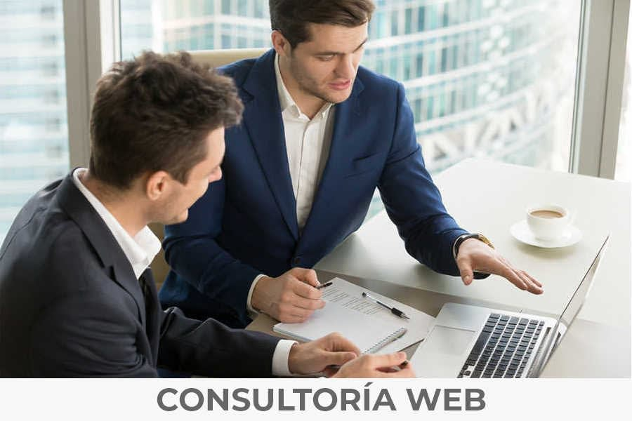 consultoría web especializada
